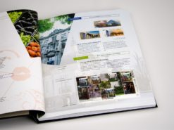 DAVO Luxe supplement Nederland geillustreerd verzamelen '12
