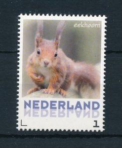 Nederland 2013 Eekhoorn NVPH 3013