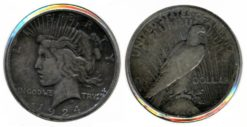 Verenigde Staten 1924 - 1 Dollar